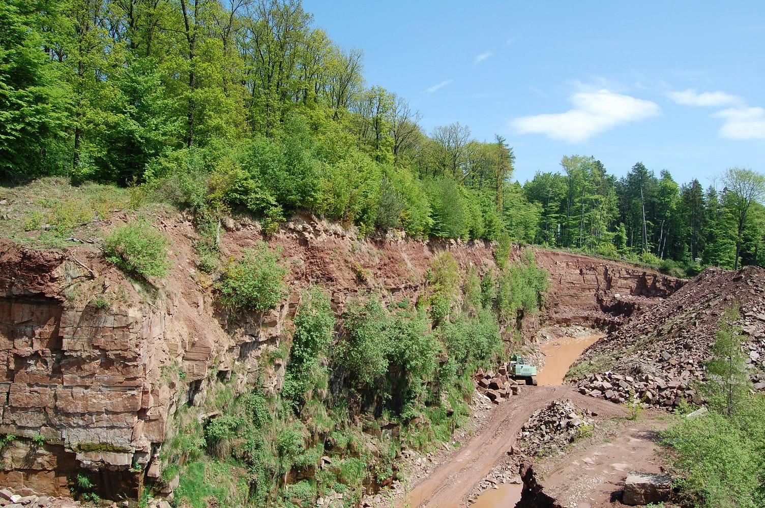 steinbruch - naturpark